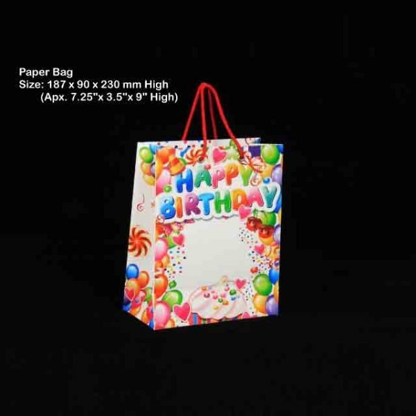 Paper Bag 20001 Pack of 10