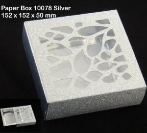 10078 Silver Pack of 10