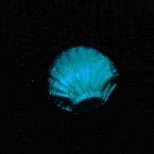 Blue Emb Foil Big Pack of 200