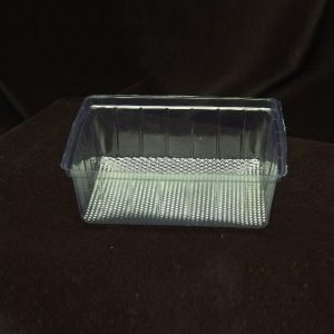 Biscuit Tray 250 gms Pack of 100